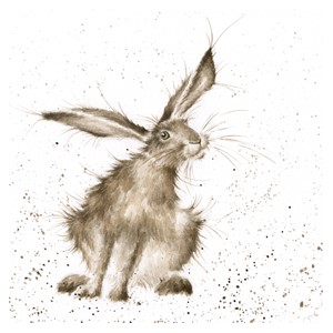 Doble kort 150x150, The Country Set, Hare-Raising