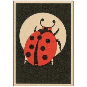Enkelt kort  Art Press, 148x105, Ladybird