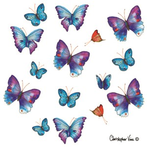 "Kort 100x100, Christopher Vine Design, ""Blue Butterflies"""