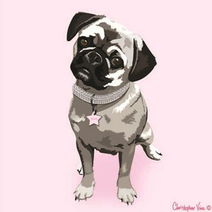 "Kort 100x100, Christopher Vine Design, ""Pug"""