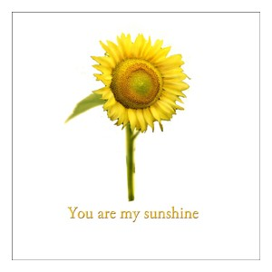 Kort 100x100, Mini Portfolio, You are my sunshine