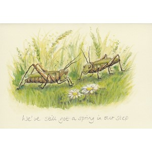 Kort Two Bad Mice: We`ve still got a spring in our step
