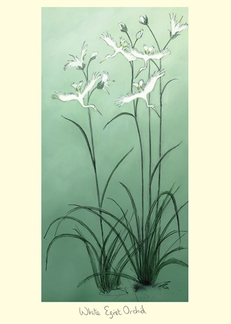 Kort Two Bad Mice: White Egret Orchid
